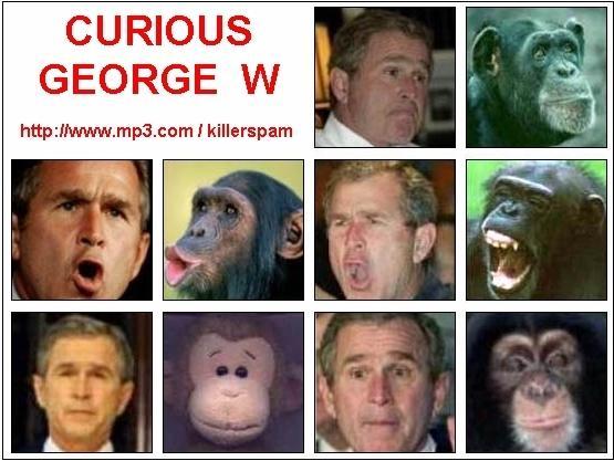 https://squathole.files.wordpress.com/2009/08/bush_-_curious_monkey.jpg