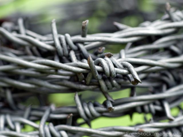 free-stock-images-barbed-wire