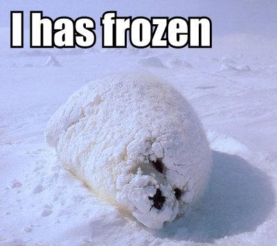i-has-frozen