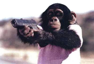 monkey-gun