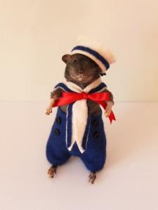hello-sailor-rat-1