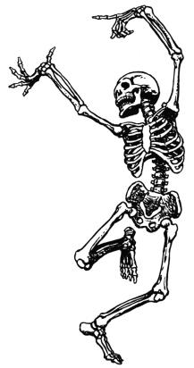 skeleton-clip-art-15