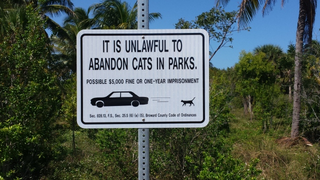 Cats in Parks