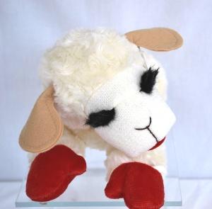 Lamb chop lamb